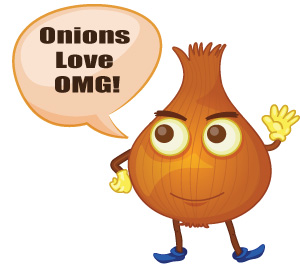 reviews of OMG Caramalized Onion Dip